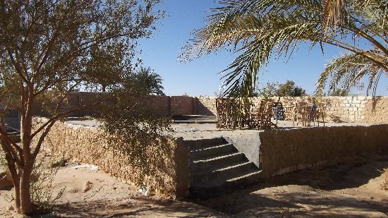 Siwa Inn Am Agbenek : natural pool in the palm trees garden