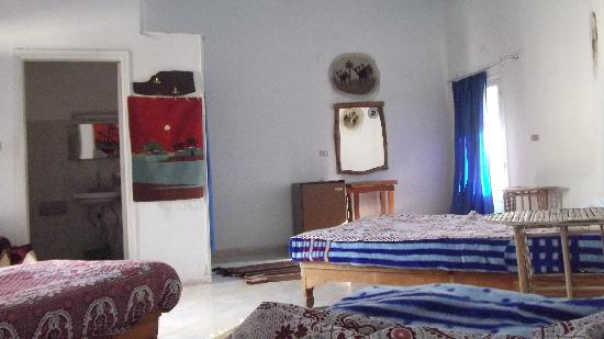 Siwa Inn Am Agbenek : 1-7 places room with air-conditionned, fridge, television, private terrassy