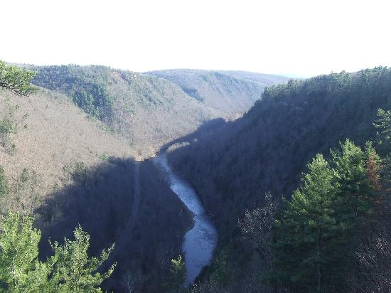 Pine Creek Gorge: east rim