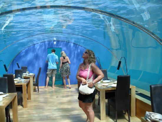 Under water restaurant picture of conrad maldives for Conrad maldives rangali island resort islas maldivas