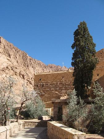 St. Catherine's Monastery Guesthouse: Gardens around Guest House
