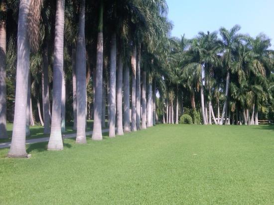 Vista parcial de uno de los jardines Hacienda San Gabriel de las Palmas