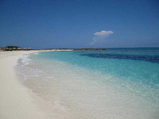 Melia Buenavista : la plage