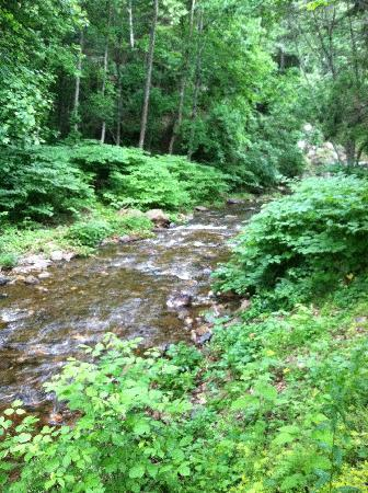 The Cabins at Brookside: The stream that runs in the back of the cabins