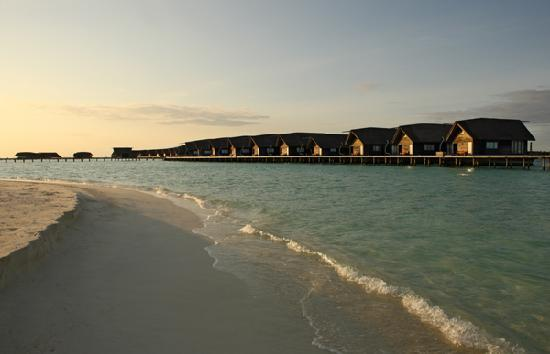 Cocoa Island by COMO: View of Suites and Villas