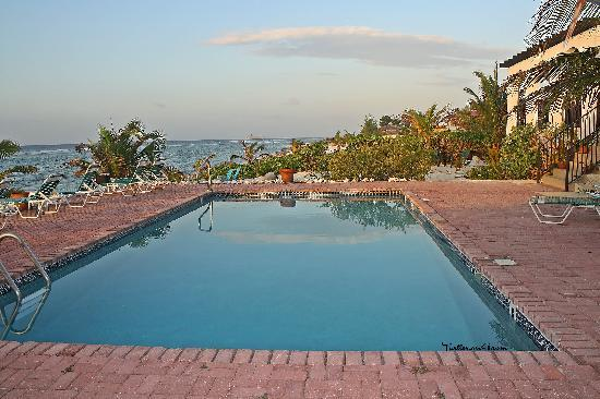 Turtle Nest Inn: Swimming pool at sunrise.