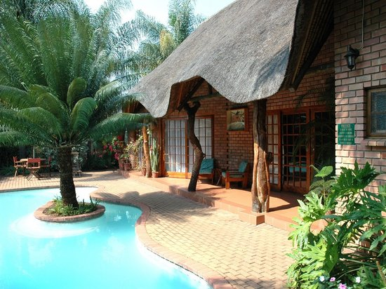 Trees Too Guest Lodge : Most rooms under thatach near pool in tropical garden