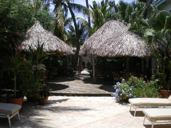Paradera, Aruba : A part of the inner garden