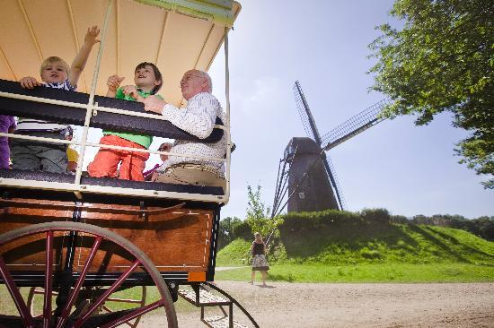 Bokrijk: Horse and cart