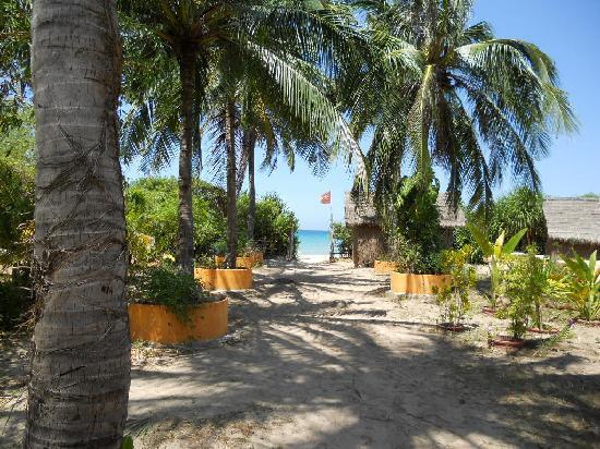Jungle Beach VietNam: that's your view