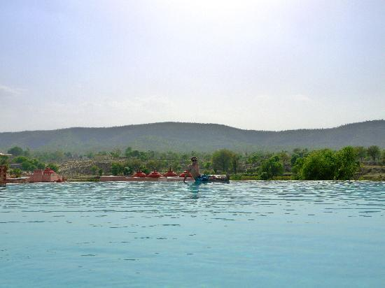 Tree of Life Resort & Spa Jaipur: The infinity pool