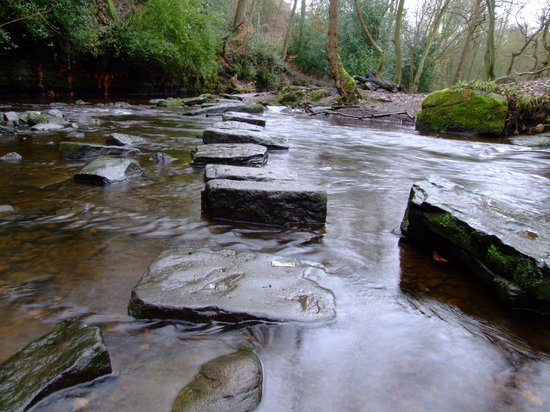 ‪‪Rivelin Valley Nature Trail‬: Stepping Stones‬