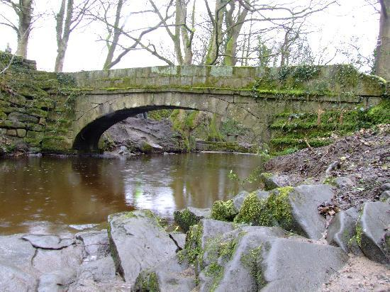 Rivelin Valley Nature Trail: Packhorse Bridge