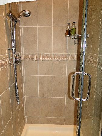 Cranmoor House: Power shower