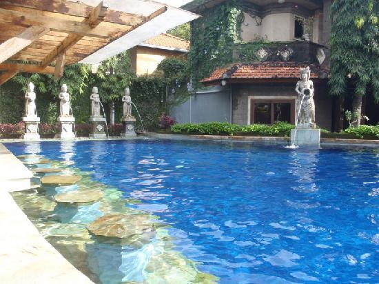 Putu Bali Villa and Spa: Pool