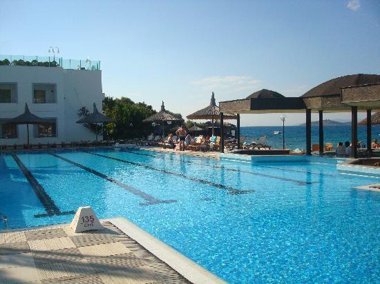 Hotel Samara: vue de la piscine