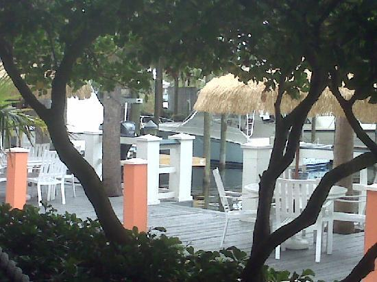 Calypso Joe S Caribbean Grille View From Outdoor Dining Area