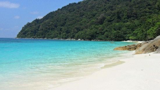 Arwana Perhentian Eco Resort & Beach Chalet: plage paradisiaque de turtle bay perhentian
