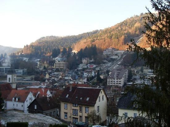 Schwarzwald Panorama: View from balcony