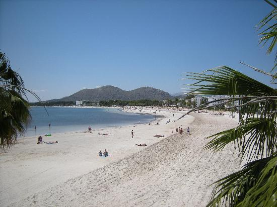 Hotel Tropico Playa: PORT OF ALCUDIA BEACH