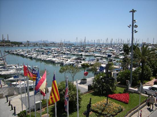 Hotel Tropico Playa: PORT OF ALCUDIA MARINA