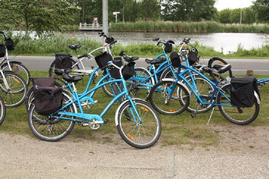 Mike S Bikes Countryside Tour