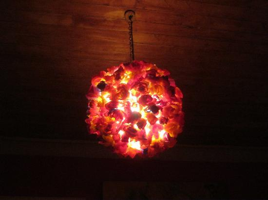 Don Santiago Hostel: awesome lamp