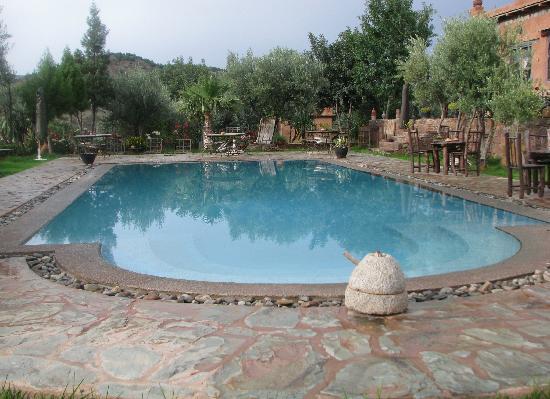 Ouirgane, Maroko: Hotel pool