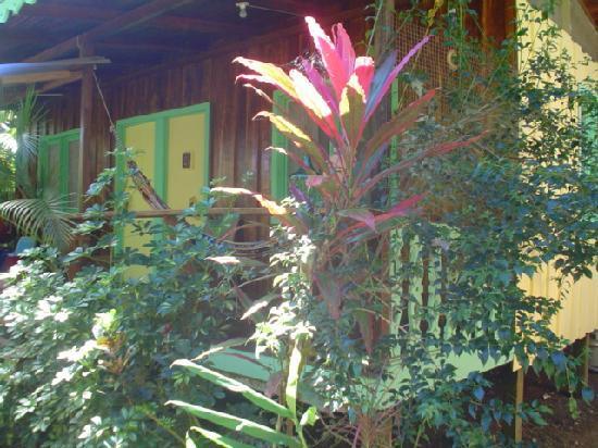 Playa Chiquita Lodge : New Years celebration by the beach
