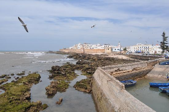 Dar Selwan Wellness & Spa : Essaouira