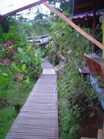 Playa Chiquita Lodge : cabins beach walkway