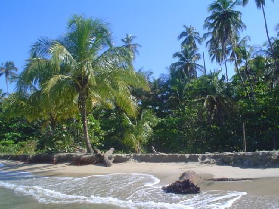 Playa Chiquita Lodge : Playa Chiquita Beach