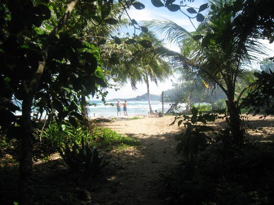 Playa Chiquita Lodge: 50 meter walkway to the beach