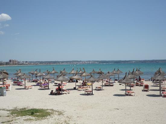 Ilusion Calma: La plage au bout de la rue de l'hôtel