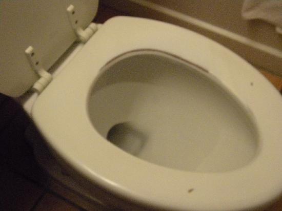 Days Inn Flagstaff I-40: toilet seat was nasty