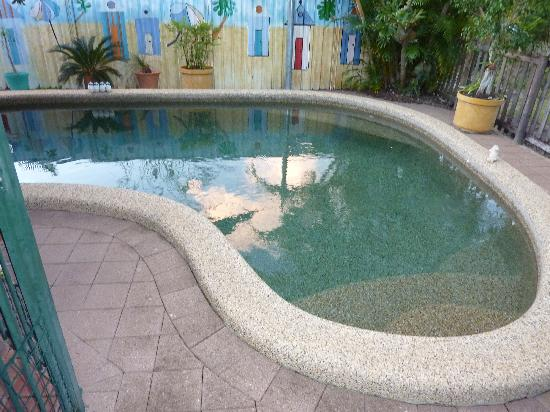 Cairns Bed & Breakfast: pool
