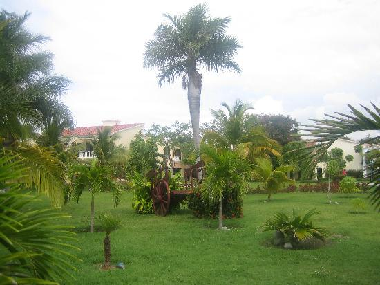 Brisas Guardalavaca Hotel: This was in between the villas.  Very pretty and well maintained.