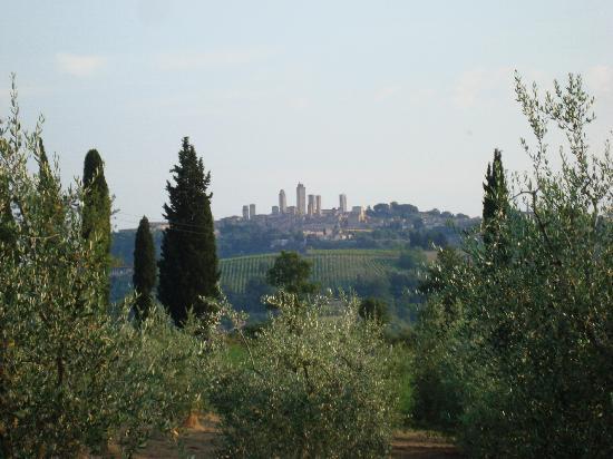 Agriturismo Il Vecchio Maneggio: San Gimignano from the poolside