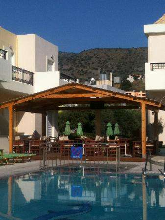 Olive Grove Apartments 사진