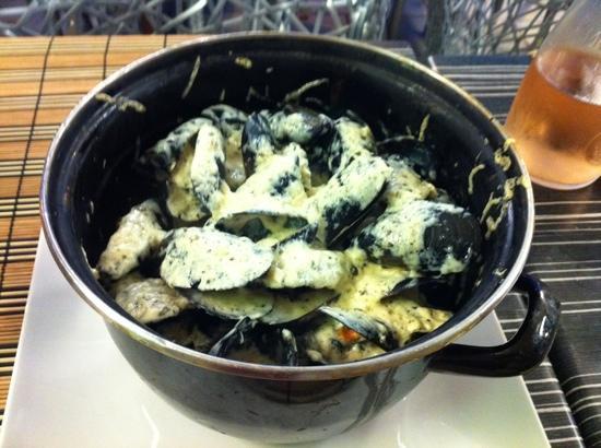 Red Sea : fantastic mussels