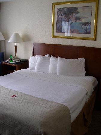 Ramada Fishkill: king size bed