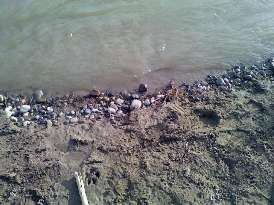 Grand Junction, CO: The River Front