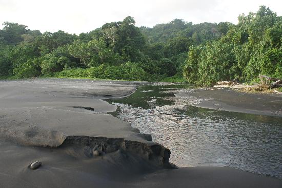 Munda, Solomon islands/Isole Salomone: Leatherback turtle nesting beach
