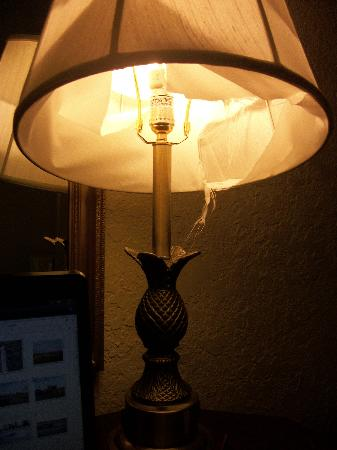 Sunrise Inn: Lampshade : (