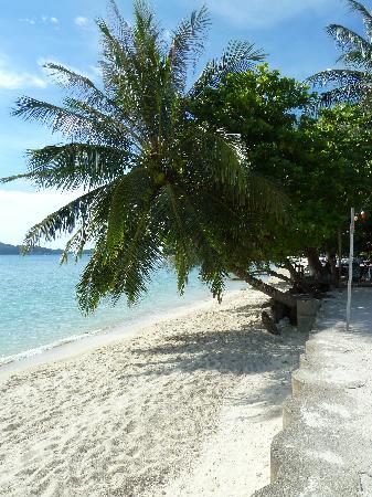 Mama's Place: Beach outside Mama's
