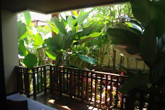 Siripanna Villa Resort & Spa: view from room
