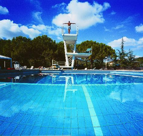Apollo Hotel Terme: particolare piscine 3