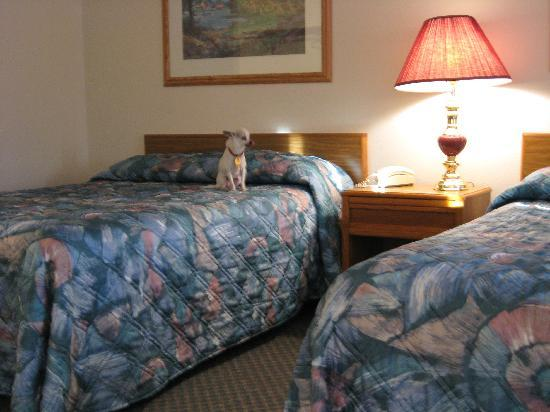 Fergus Falls, MN: Nice, large clean room