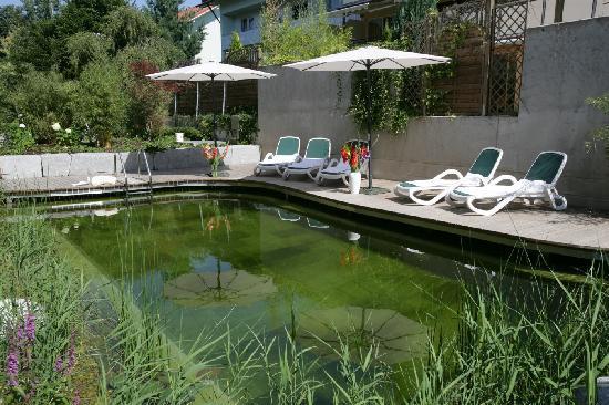 Hotel Mürz: Naturschwimmpool