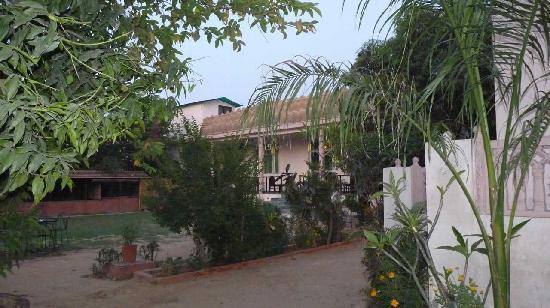 Raj Palace Resort, Ranthambhore : Restaurant